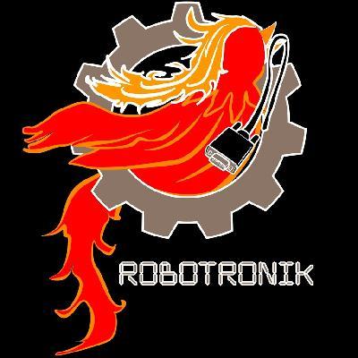 Grenoble INP - Phelma > Club robotronik