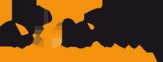 Dolphin Integration logo
